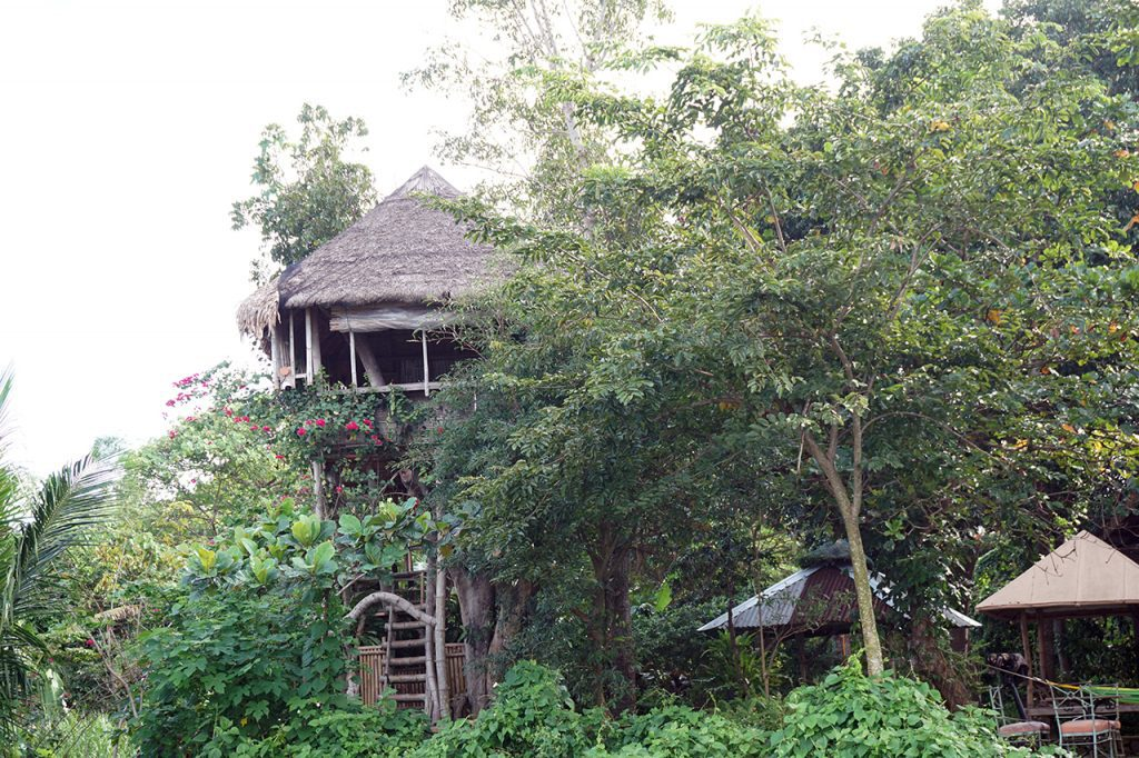 You can opt to stay at the Kapusod Treehouse for a nice view of the lake.